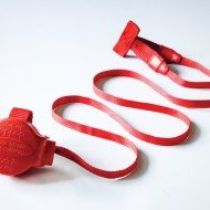Doddle pod for harnesses built in dog lead extended