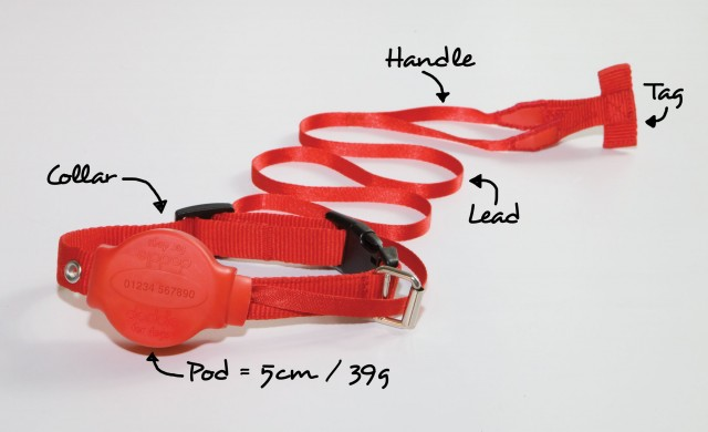 Doddle Combined Lead and Dog Collar all in one extended