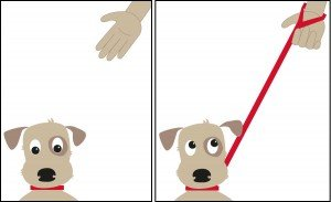 Doddle retractable dog collar