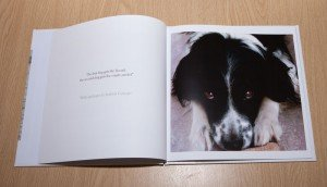 We Love Our Dogs - Pages