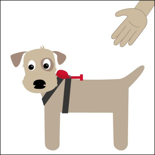 Doddle Dog Harness Pod and Lead Diagram