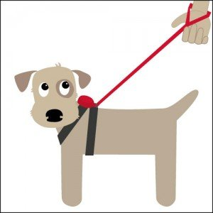 Doddle Pod for a dog harness with retractable lead
