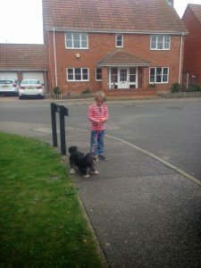 Doddle for Dogs review by Tanya Hindes