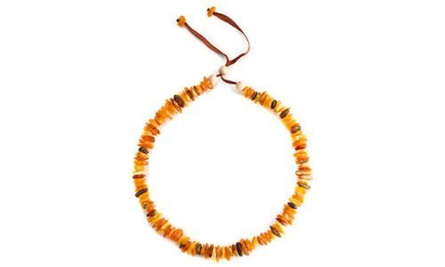 Amber-Necklace-For-Dogs