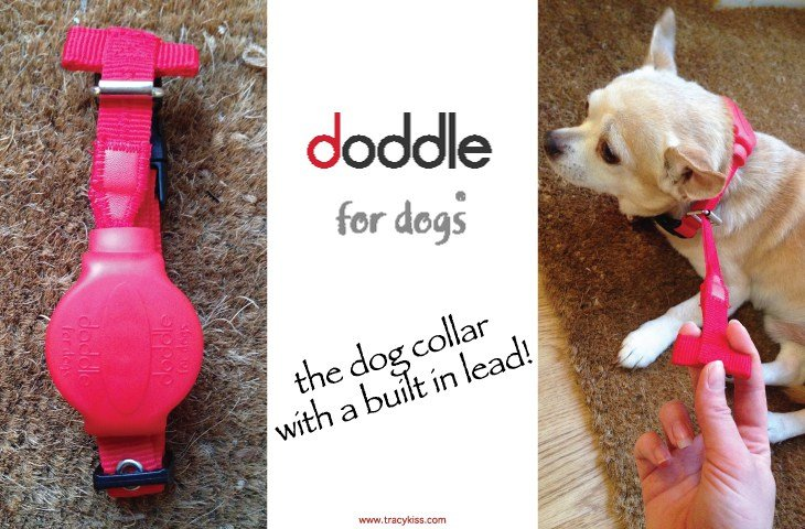 The dog collar with a built in lead!